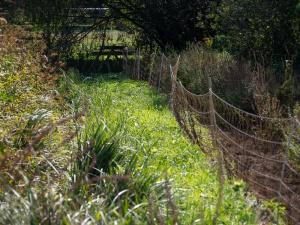 Jardins de la Marette : la biodiversité